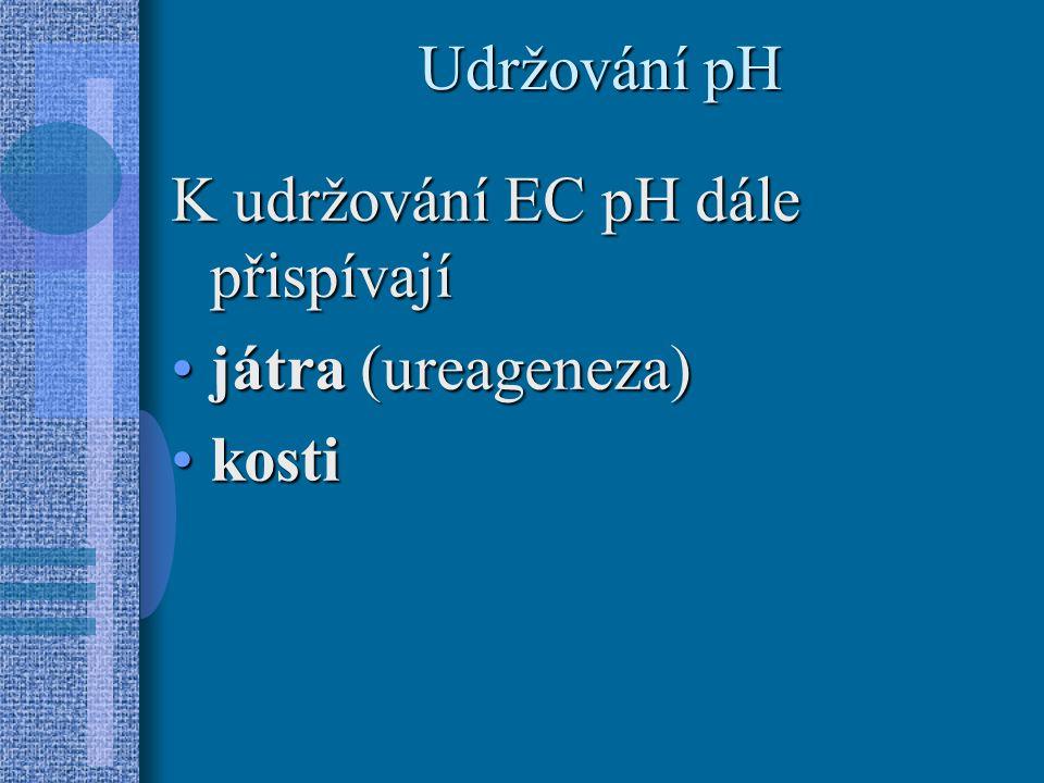 Udržování pH K udržování EC pH dále přispívají játra (ureageneza) kosti