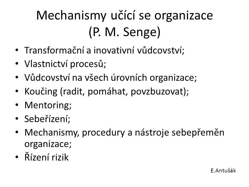 Mechanismy učící se organizace (P. M. Senge)