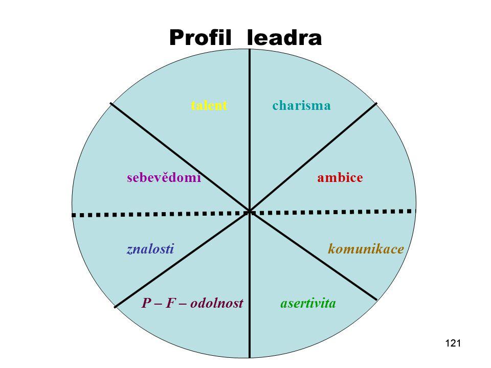 Profil leadra talent charisma sebevědomí ambice znalosti komunikace