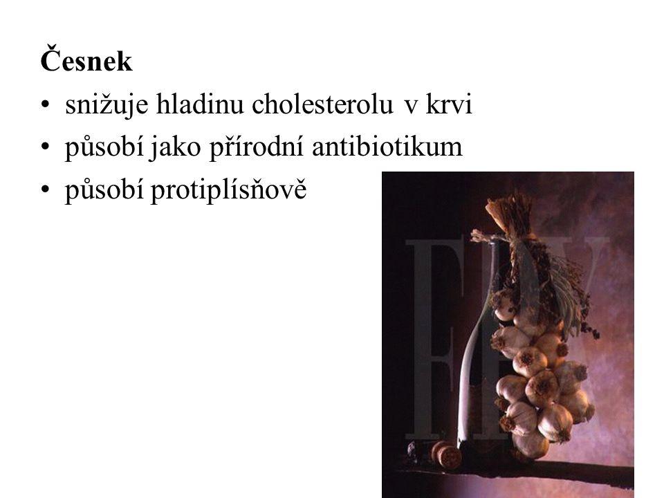 Česnek snižuje hladinu cholesterolu v krvi působí jako přírodní antibiotikum působí protiplísňově