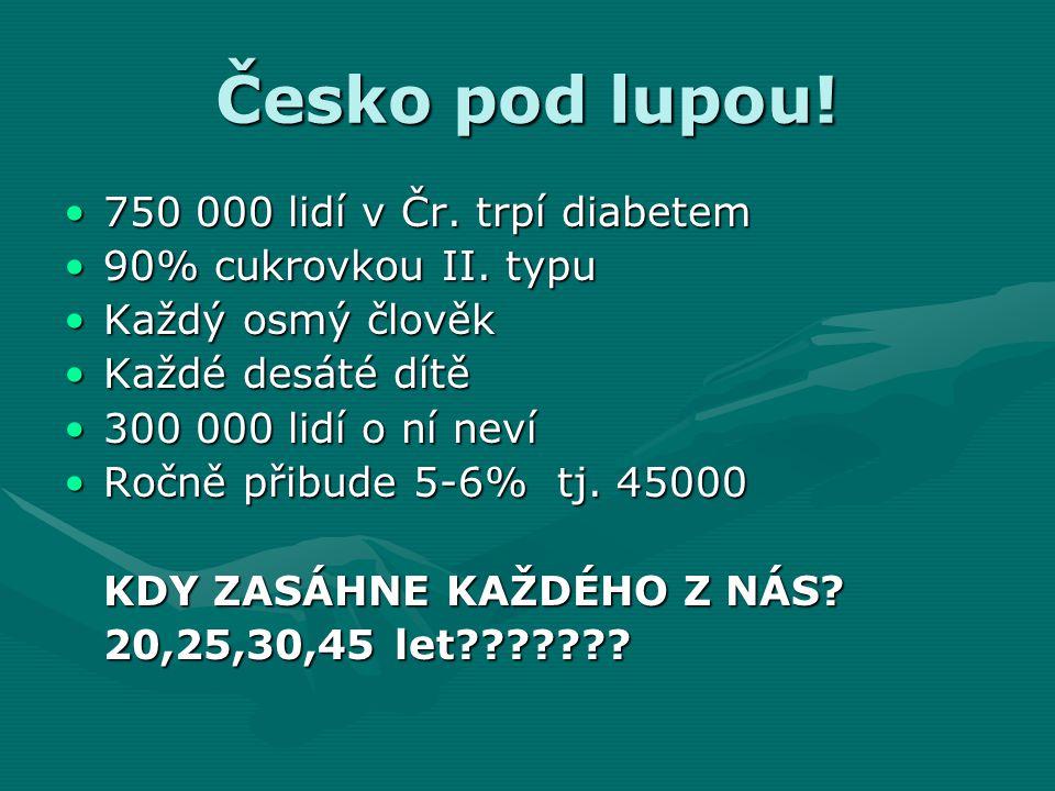 Česko pod lupou! 750 000 lidí v Čr. trpí diabetem