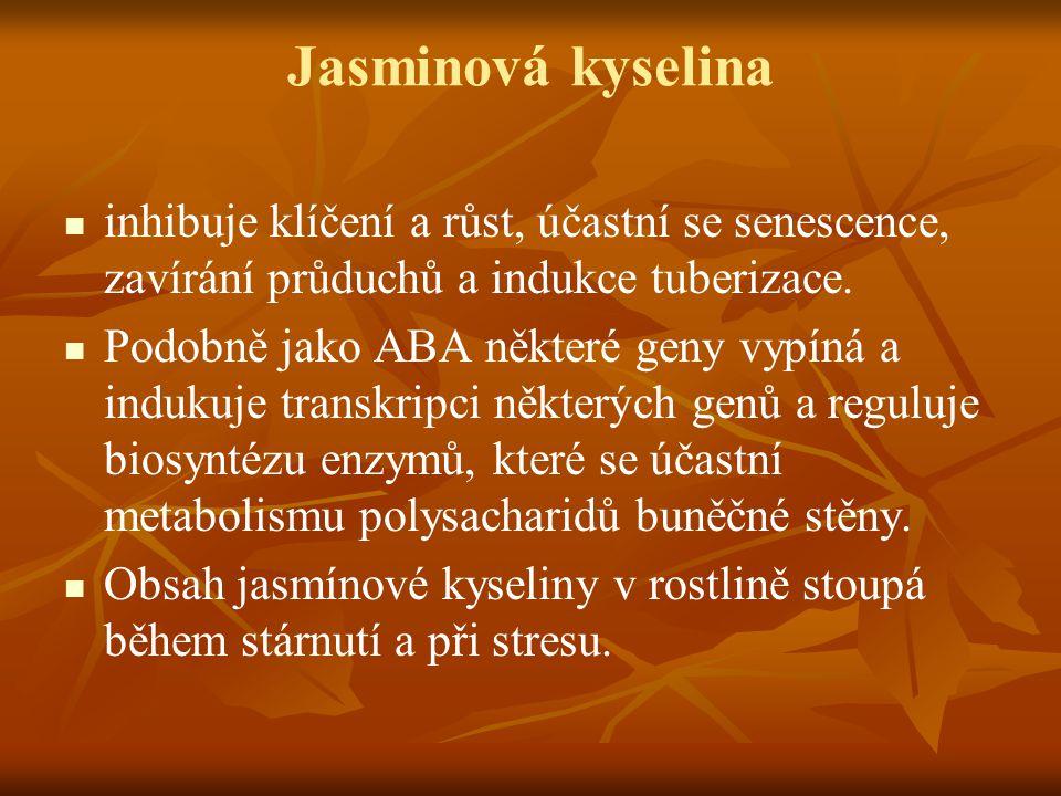 Jasminová kyselina inhibuje klíčení a růst, účastní se senescence, zavírání průduchů a indukce tuberizace.