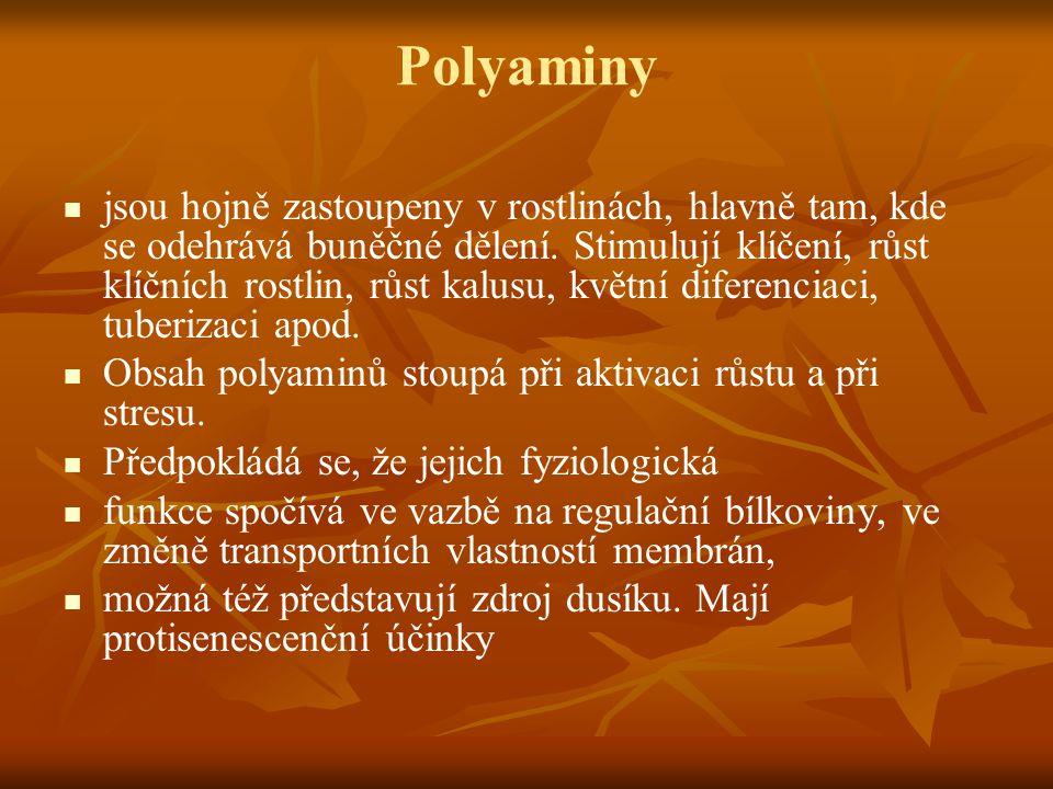 Polyaminy