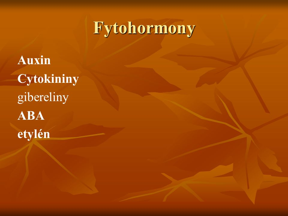 Fytohormony Auxin Cytokininy gibereliny ABA etylén