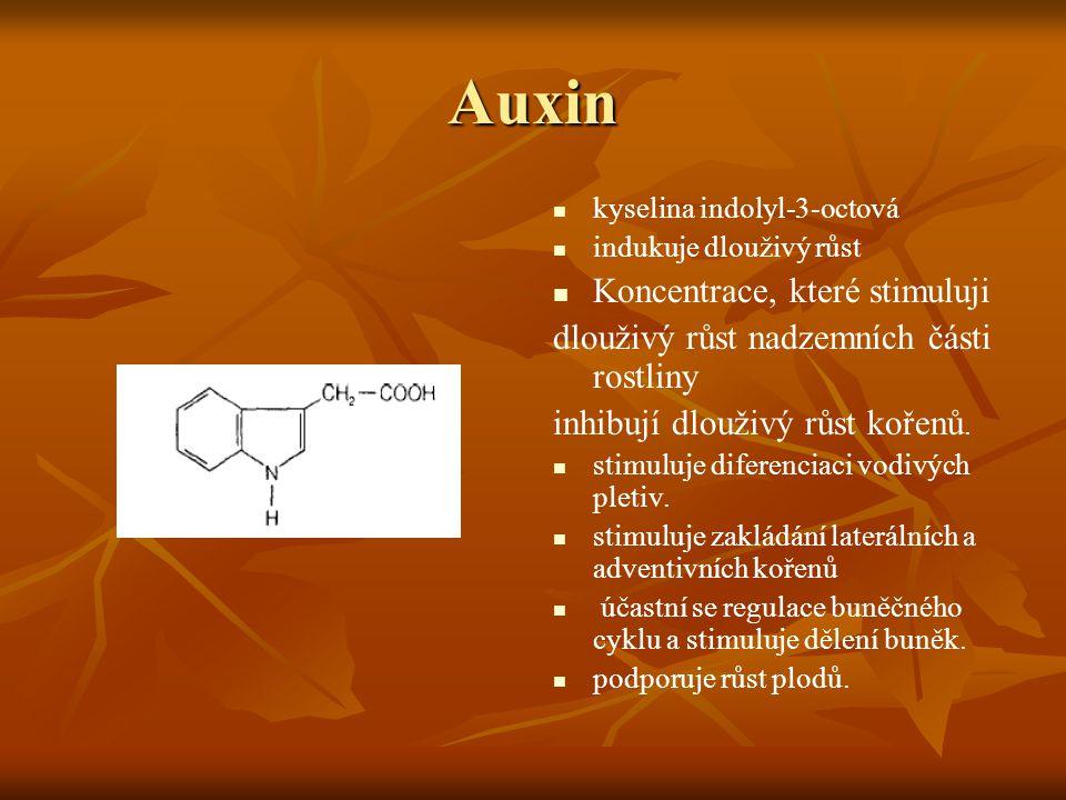 Auxin Koncentrace, které stimuluji