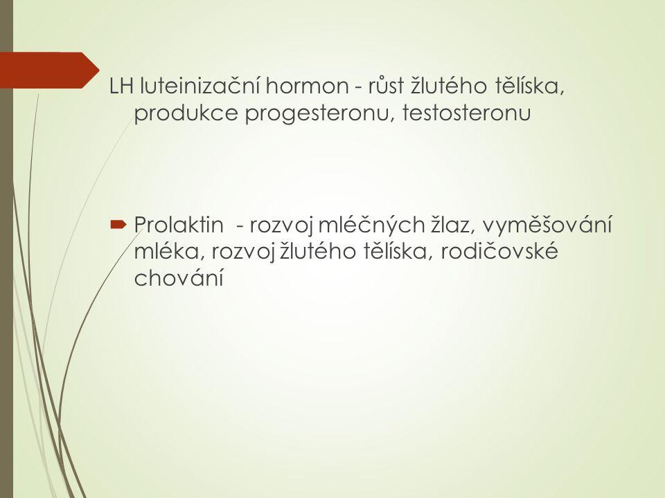 LH luteinizační hormon - růst žlutého tělíska, produkce progesteronu, testosteronu