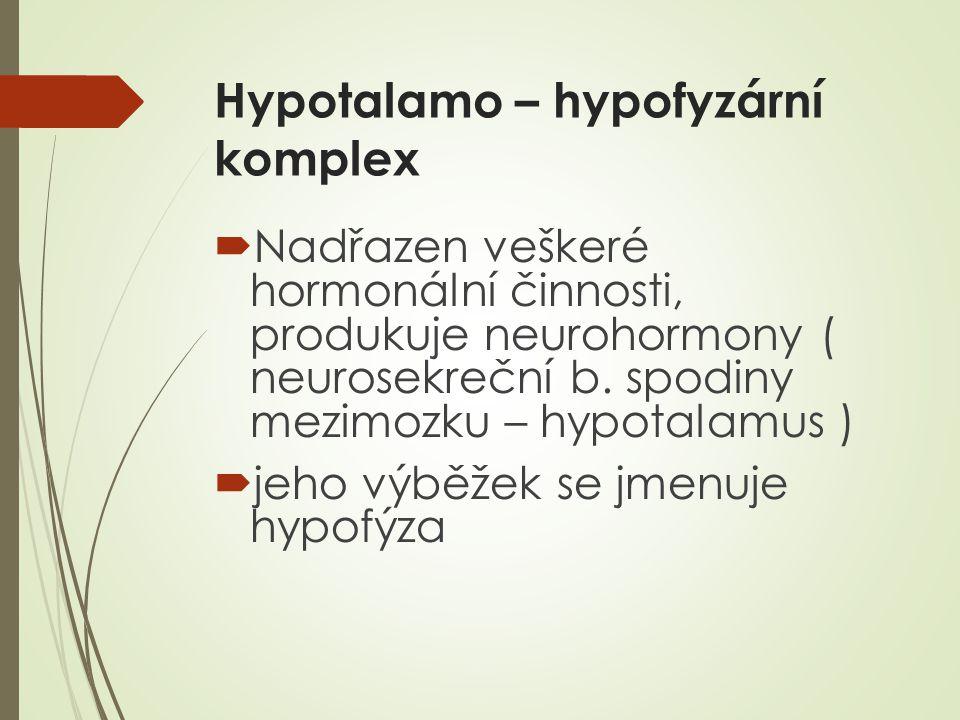 Hypotalamo – hypofyzární komplex