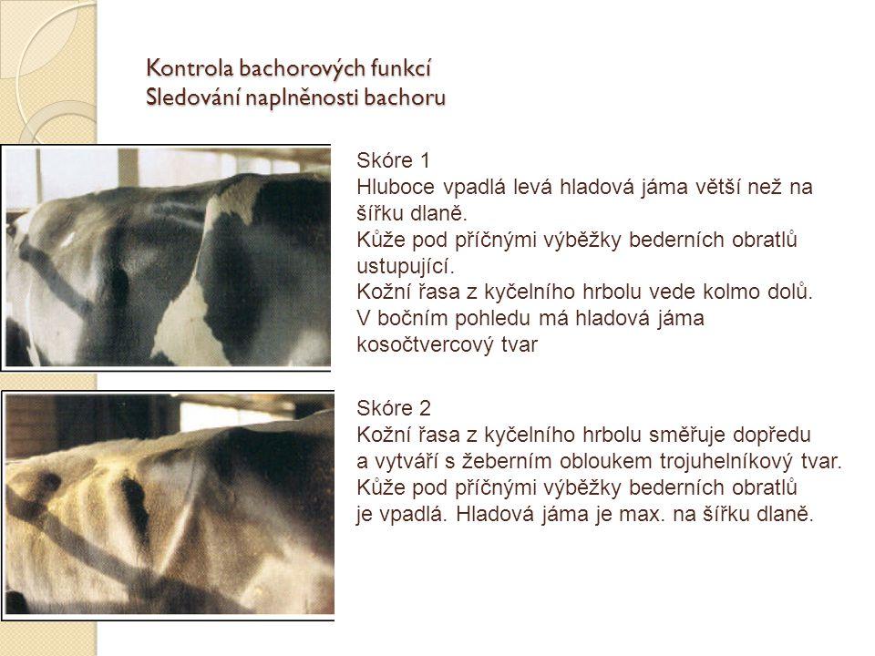 Kontrola bachorových funkcí Sledování naplněnosti bachoru