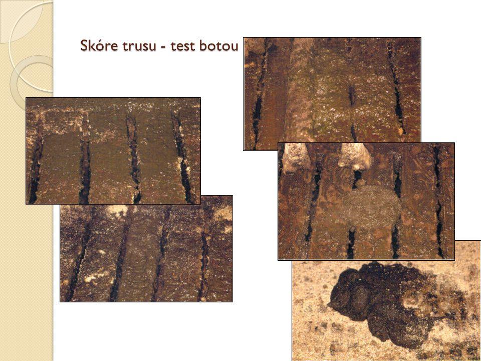 Skóre trusu - test botou
