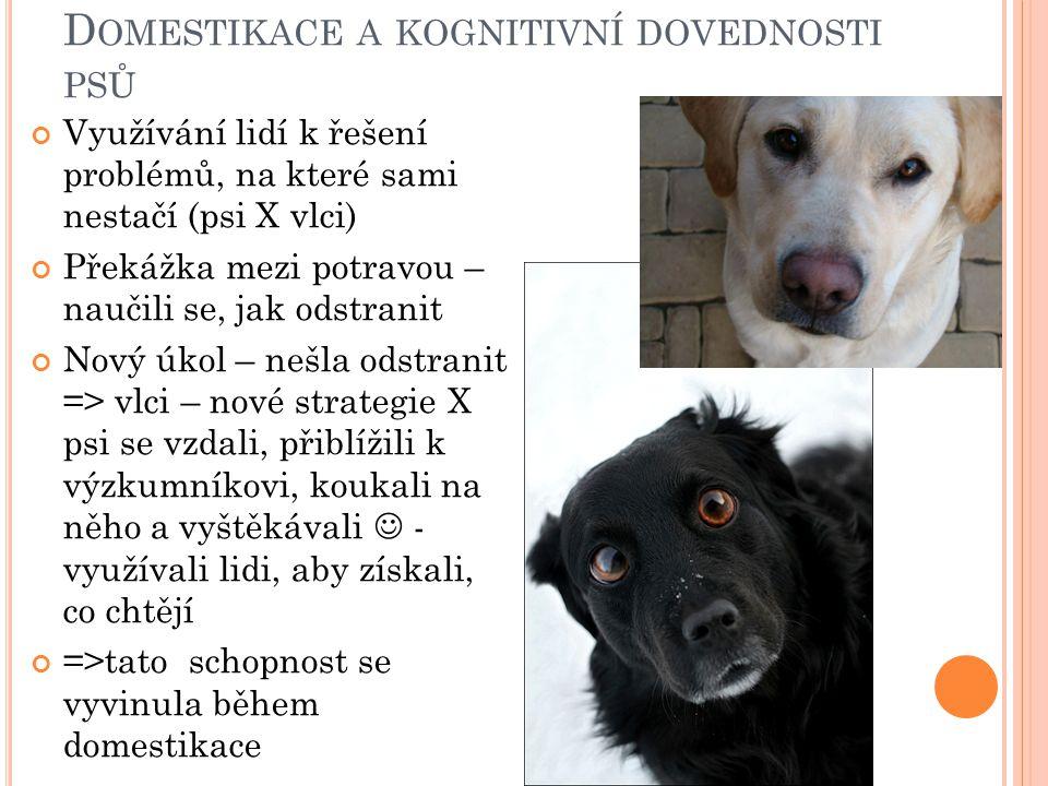 Domestikace a kognitivní dovednosti psů
