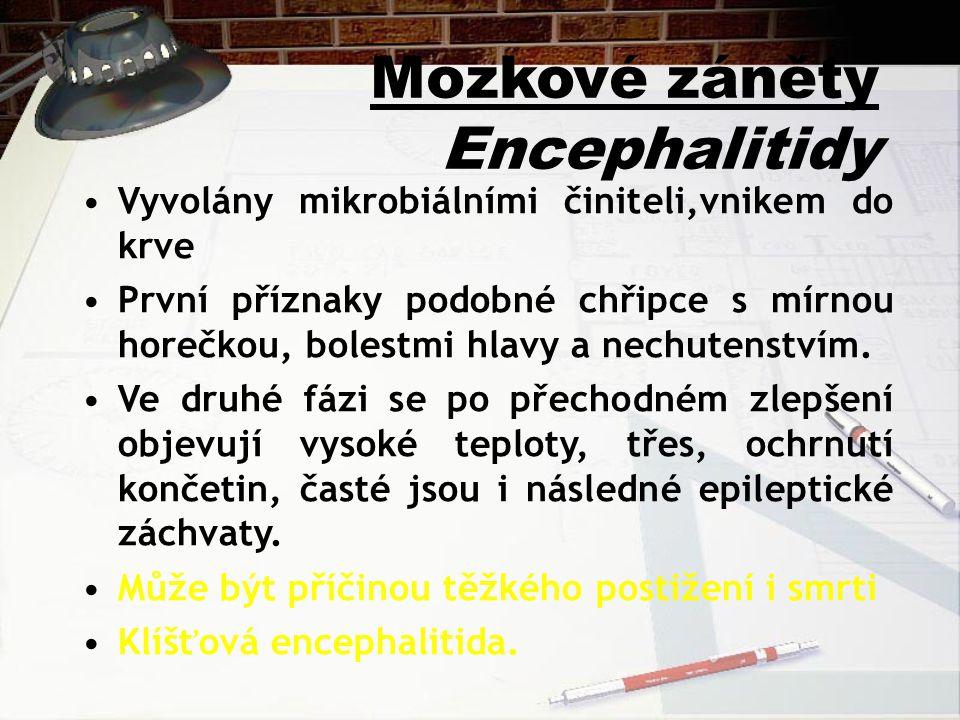 Mozkové záněty Encephalitidy