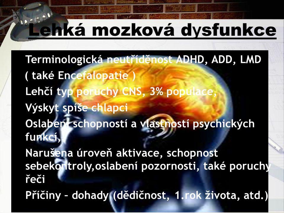 Lehká mozková dysfunkce