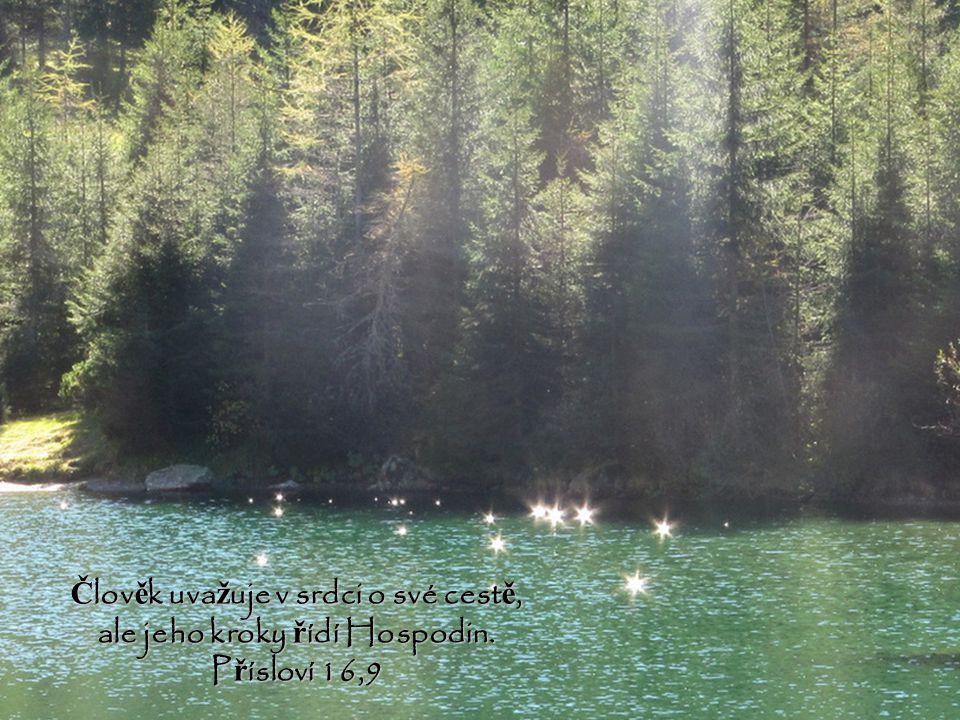 Člověk uvažuje v srdci o své cestě, ale jeho kroky řídí Hospodin.