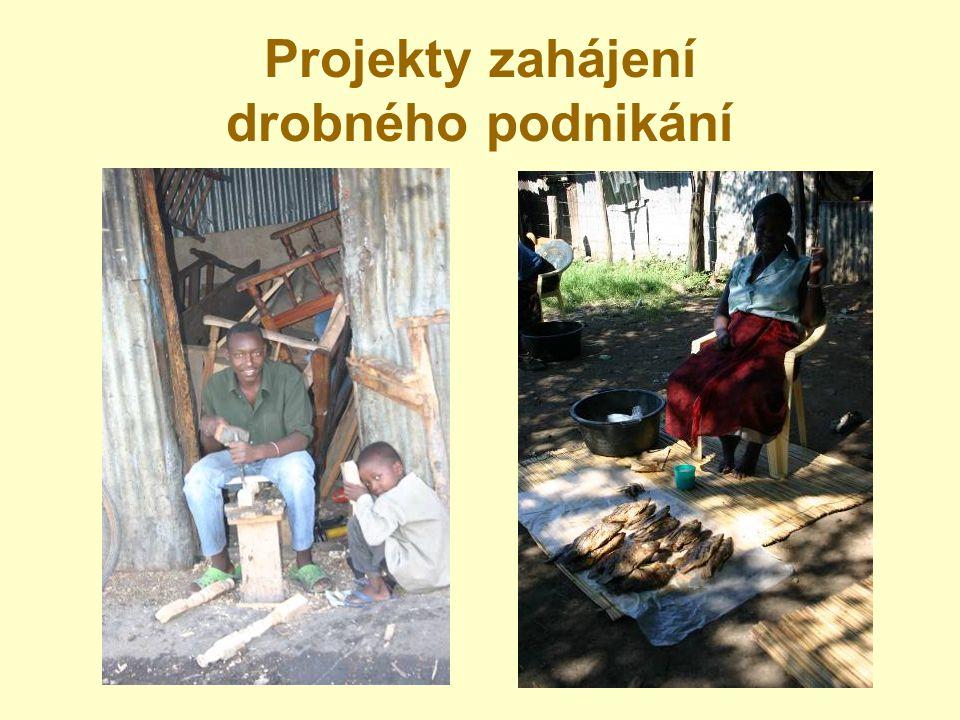 Projekty zahájení drobného podnikání