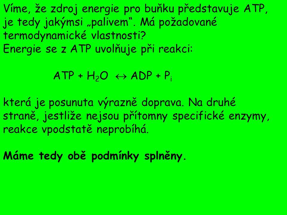 """Víme, že zdroj energie pro buňku představuje ATP, je tedy jakýmsi """"palivem . Má požadované termodynamické vlastnosti"""