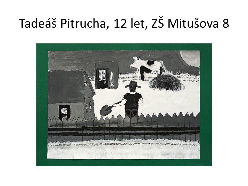 Tadeáš Pitrucha, 12 let, ZŠ Mitušova 8