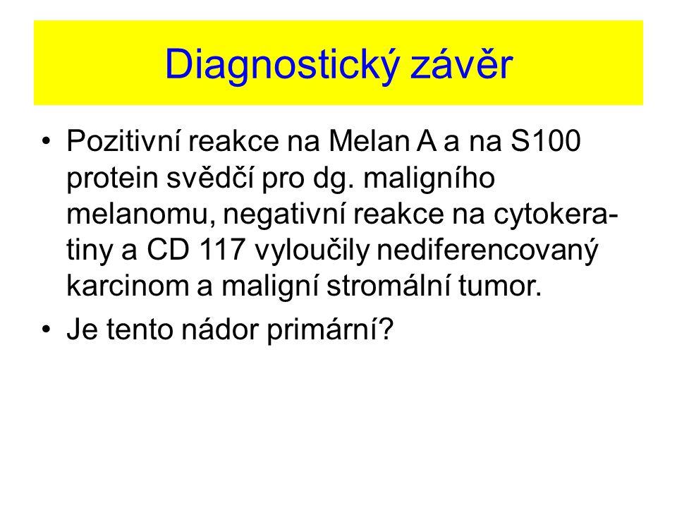Diagnostický závěr