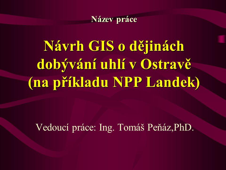 Vedoucí práce: Ing. Tomáš Peňáz,PhD.