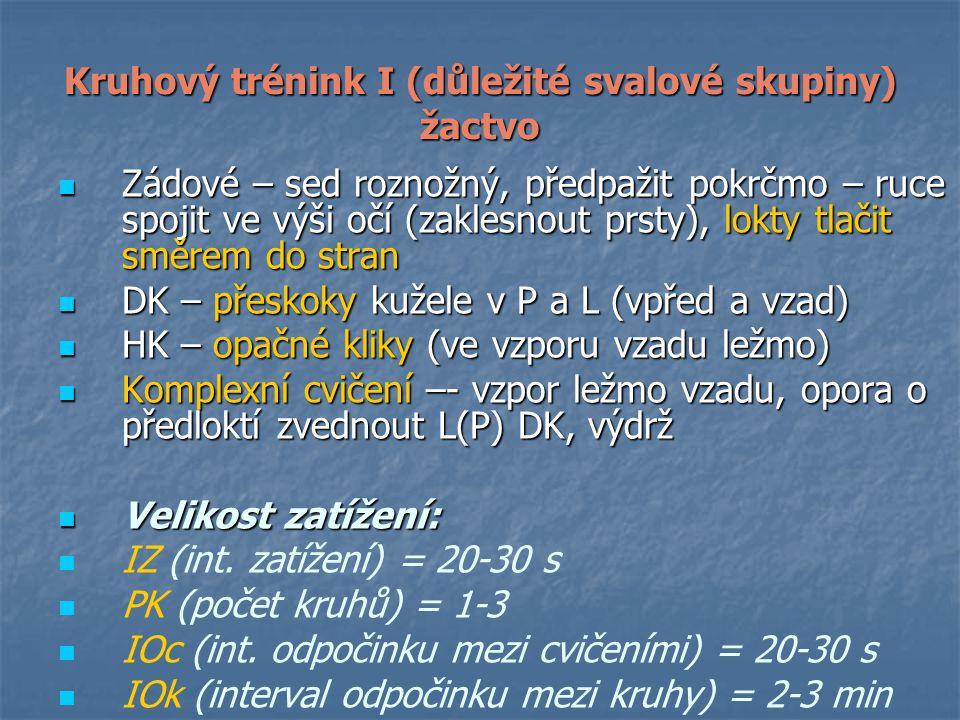 Kruhový trénink I (důležité svalové skupiny) žactvo