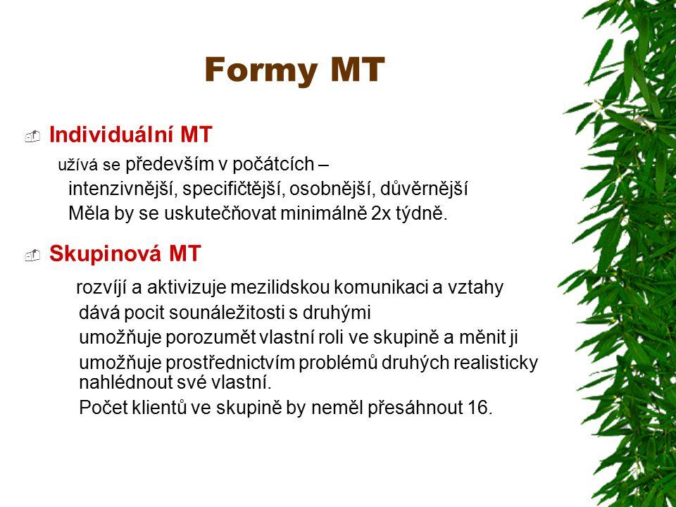 Formy MT Individuální MT Skupinová MT
