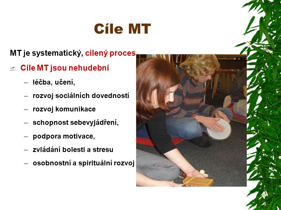 Cíle MT MT je systematický, cílený proces Cíle MT jsou nehudební