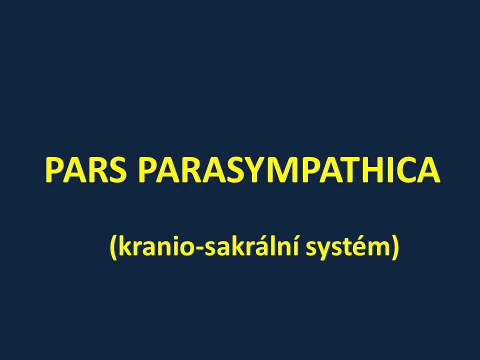 (kranio-sakrální systém)