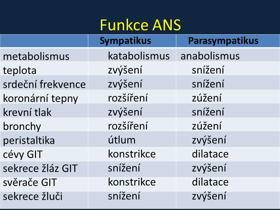 Funkce ANS metabolismus katabolismus anabolismus teplota