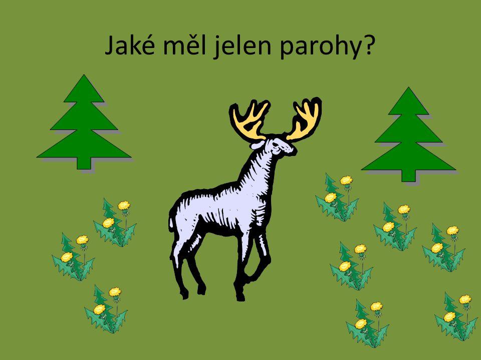 Jaké měl jelen parohy