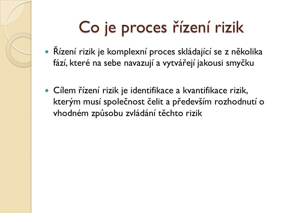 Co je proces řízení rizik