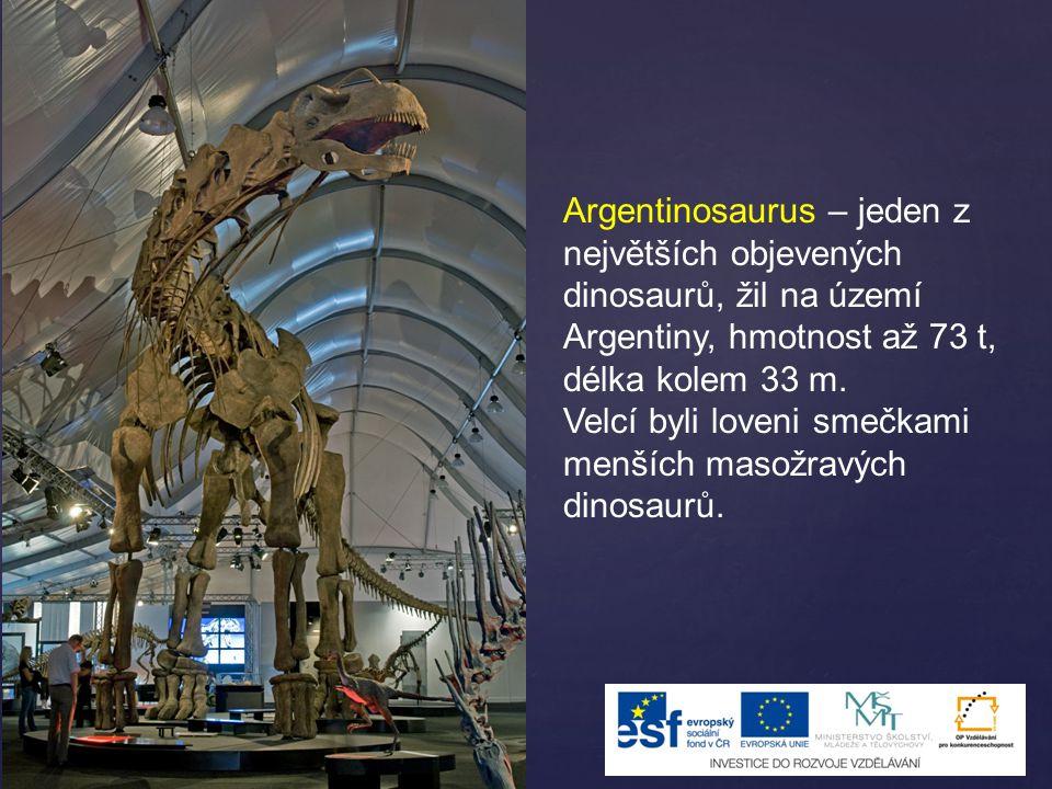 Argentinosaurus – jeden z největších objevených dinosaurů, žil na území Argentiny, hmotnost až 73 t, délka kolem 33 m.
