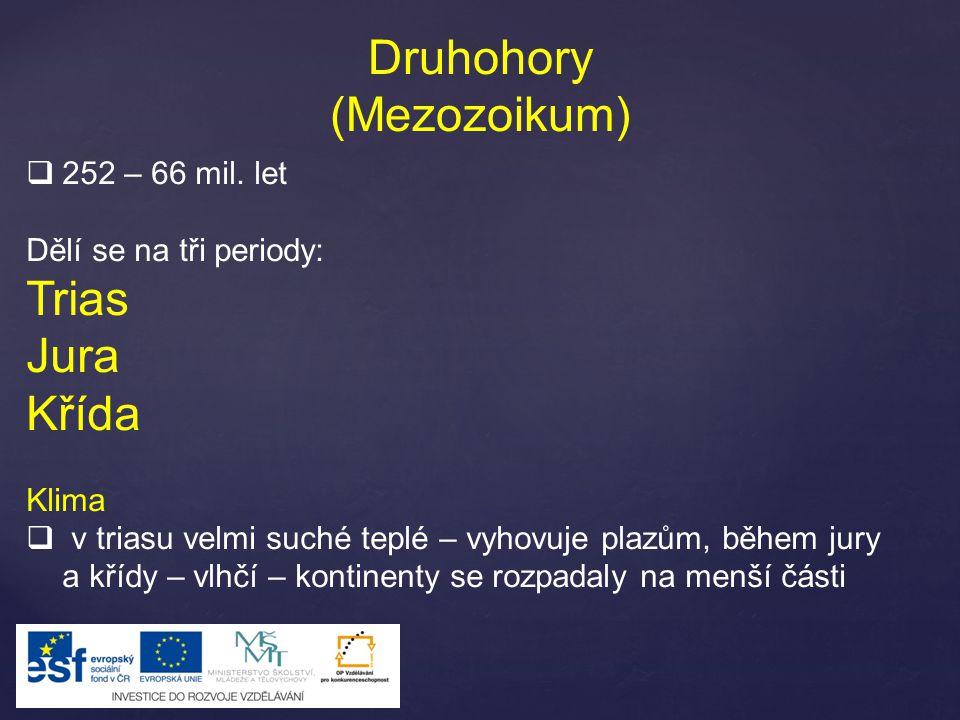 Druhohory (Mezozoikum) Trias Jura Křída 252 – 66 mil. let