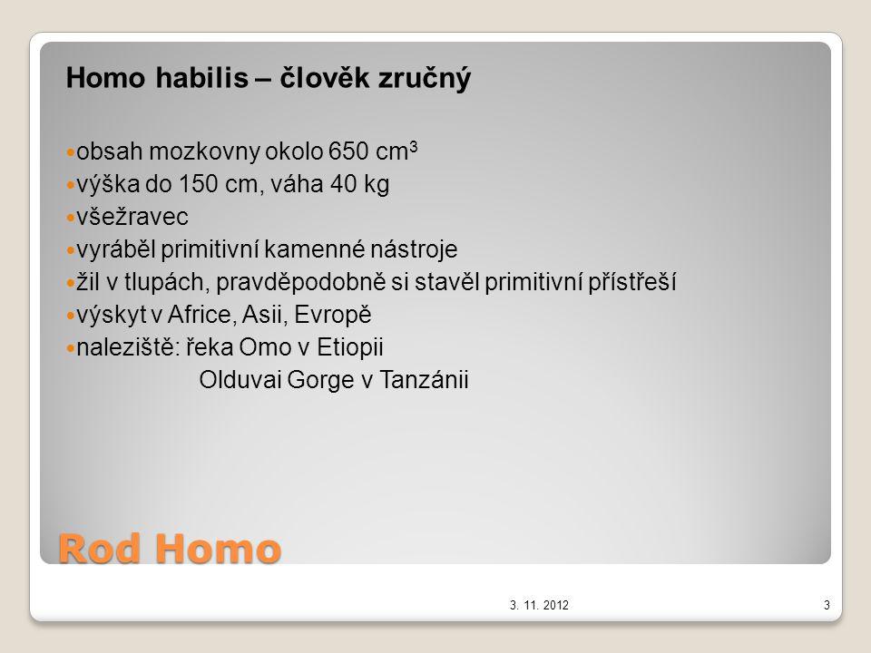 Rod Homo Homo habilis – člověk zručný obsah mozkovny okolo 650 cm3