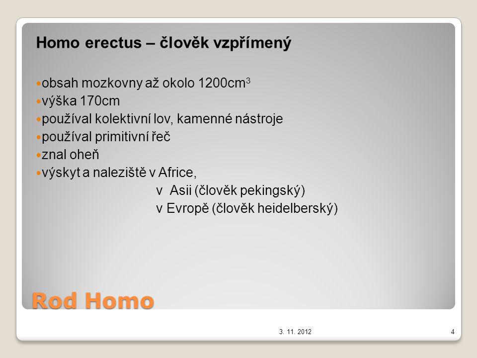 Rod Homo Homo erectus – člověk vzpřímený