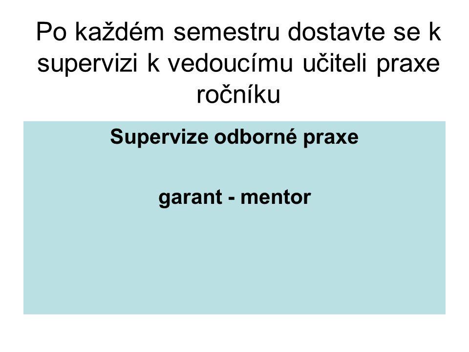 Supervize odborné praxe garant - mentor