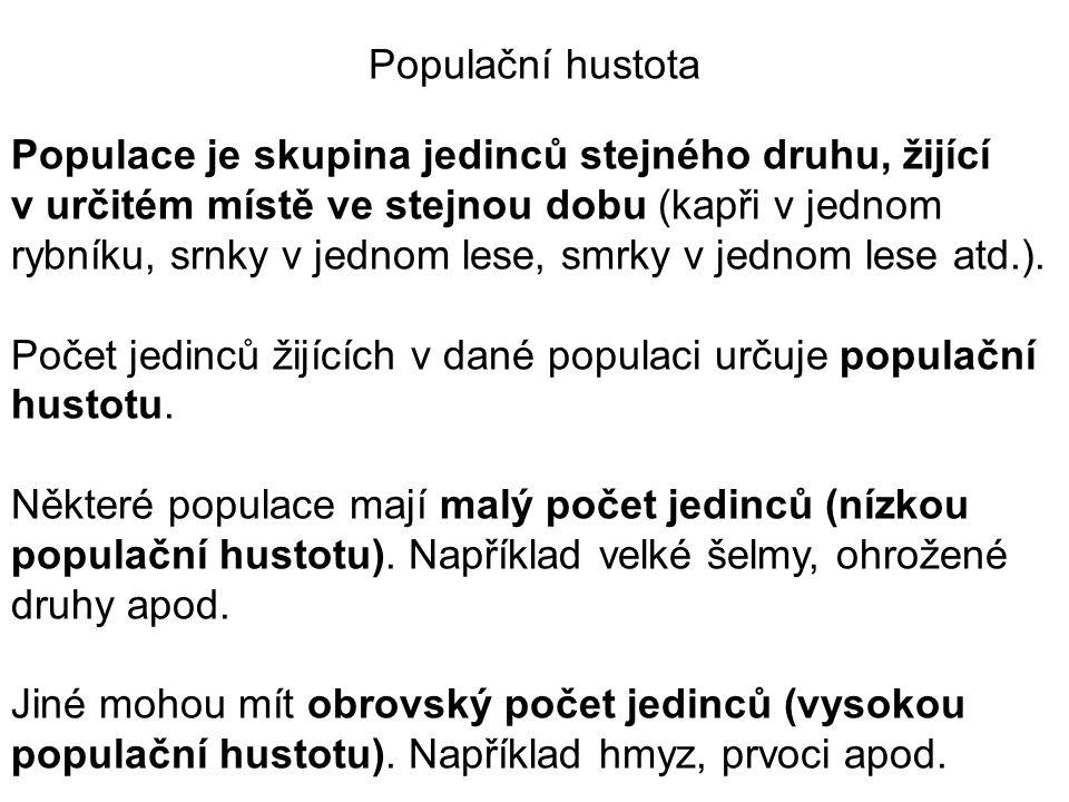 Populační hustota