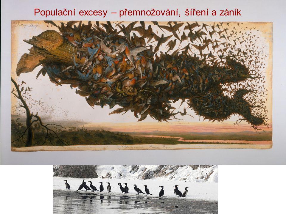 Populační excesy – přemnožování, šíření a zánik