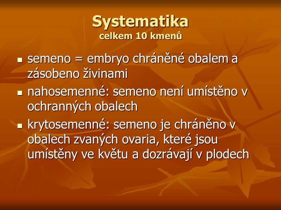 Systematika celkem 10 kmenů