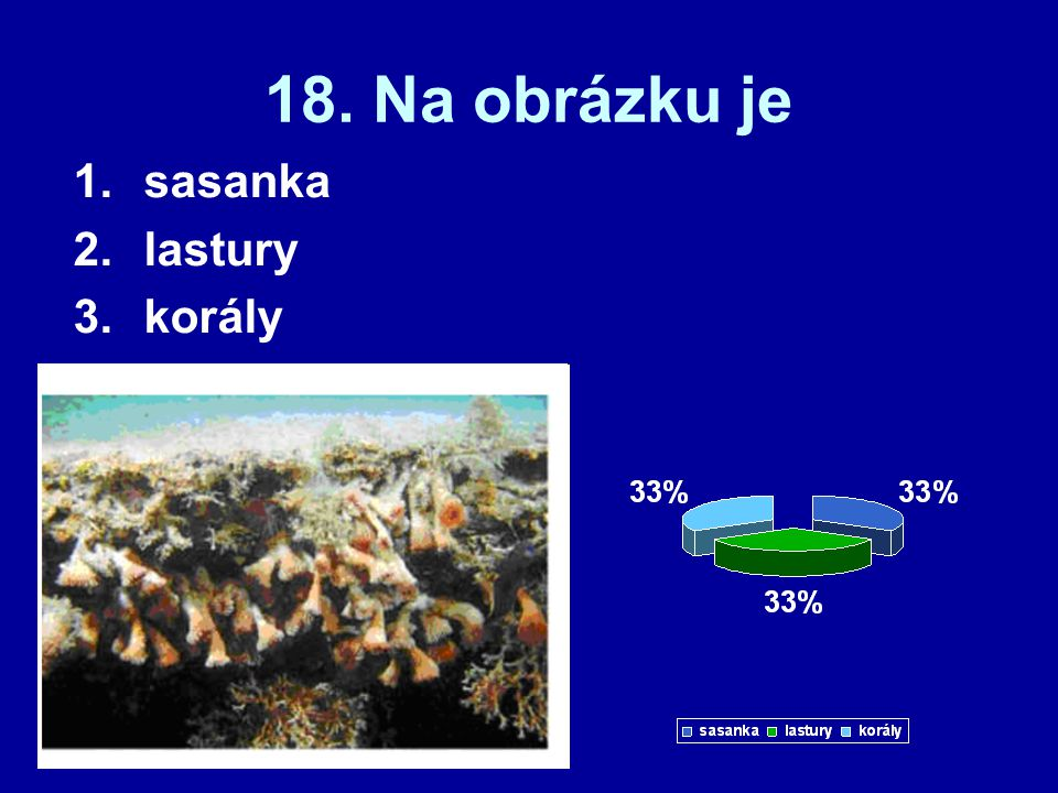 18. Na obrázku je sasanka lastury korály