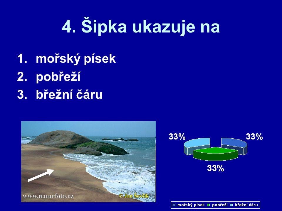 4. Šipka ukazuje na mořský písek pobřeží břežní čáru