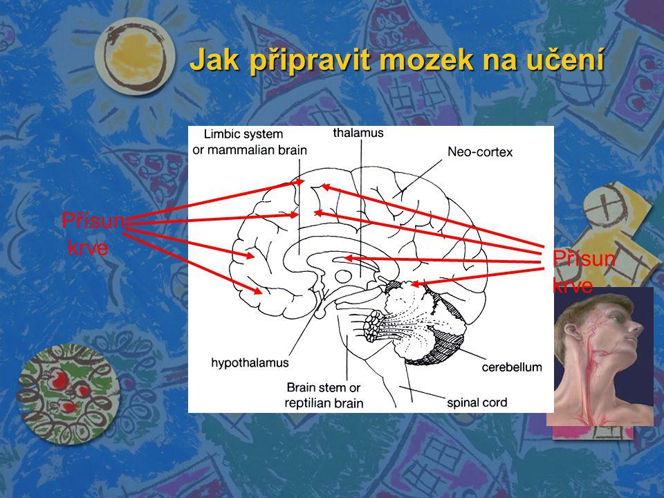 Jak připravit mozek na učení