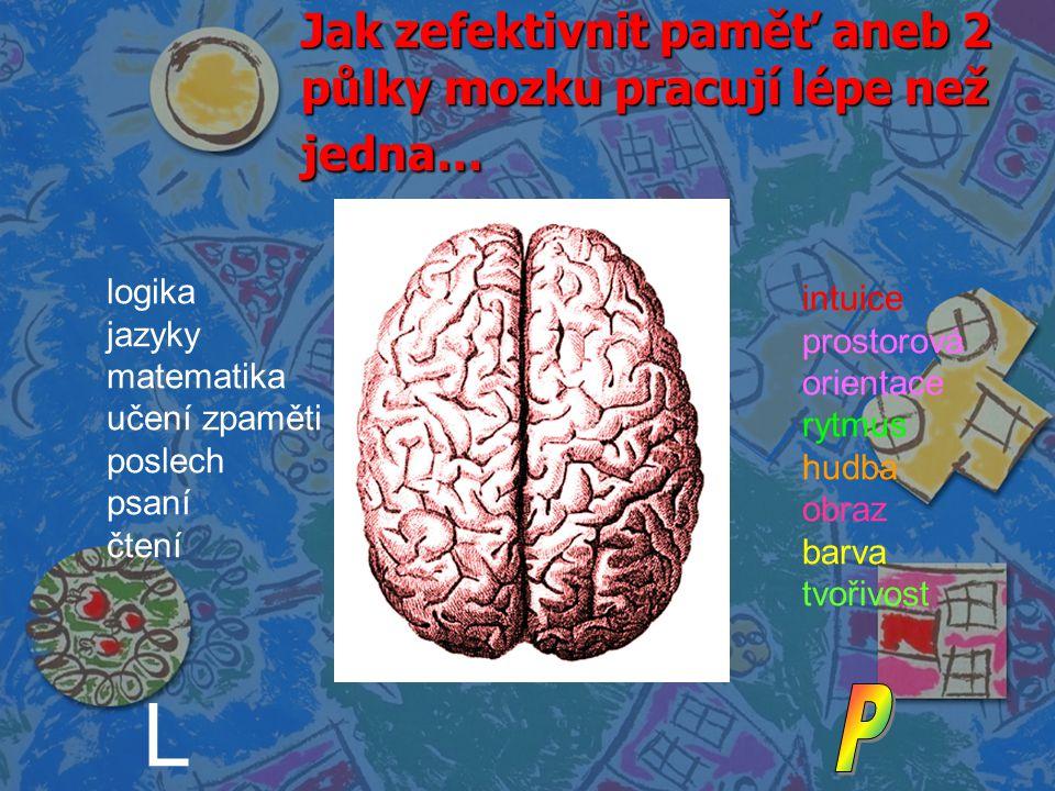 Jak zefektivnit paměť aneb 2 půlky mozku pracují lépe než jedna…