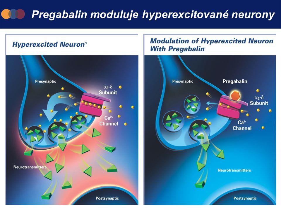 Pregabalin moduluje hyperexcitované neurony