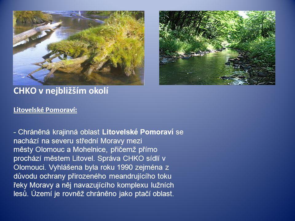 CHKO v nejbližším okolí Litovelské Pomoraví:
