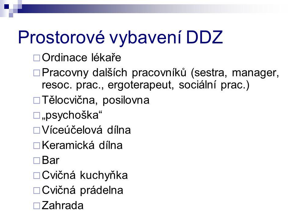 Prostorové vybavení DDZ