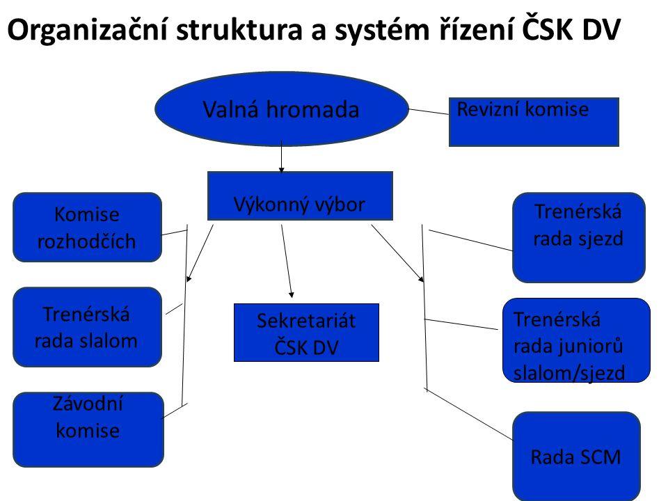 Organizační struktura a systém řízení ČSK DV