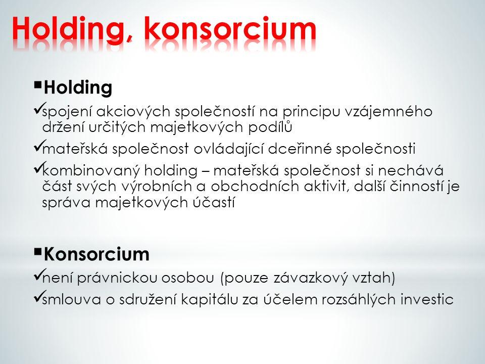Holding, konsorcium Holding Konsorcium