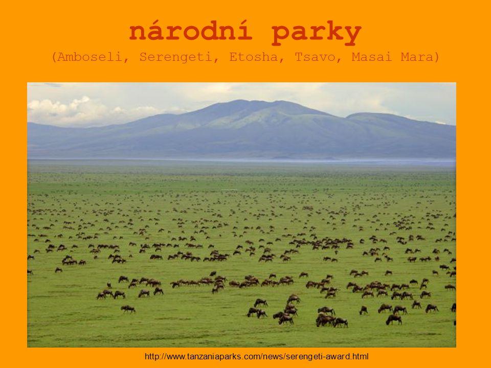národní parky (Amboseli, Serengeti, Etosha, Tsavo, Masai Mara)
