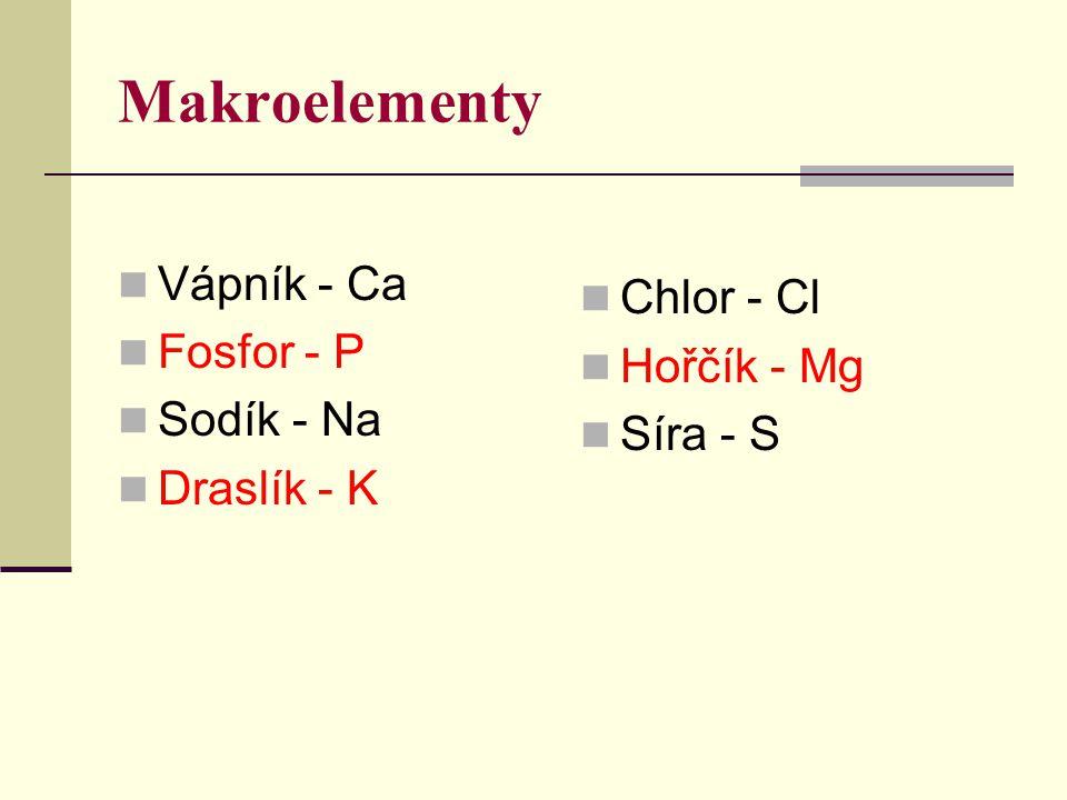 Makroelementy Vápník - Ca Chlor - Cl Fosfor - P Hořčík - Mg Sodík - Na