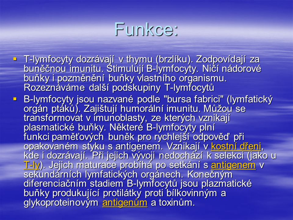Funkce:
