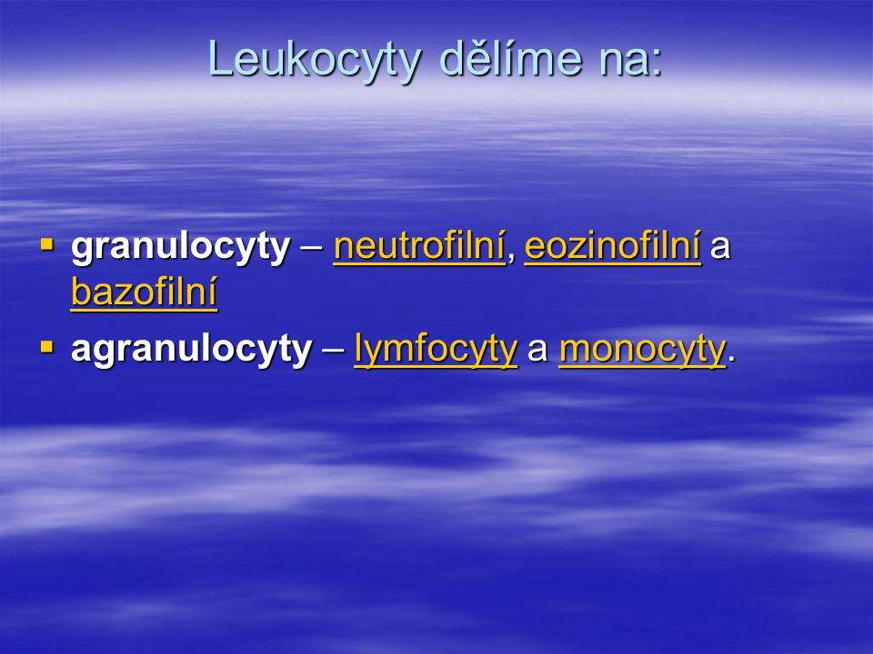 Leukocyty dělíme na: granulocyty – neutrofilní, eozinofilní a bazofilní.